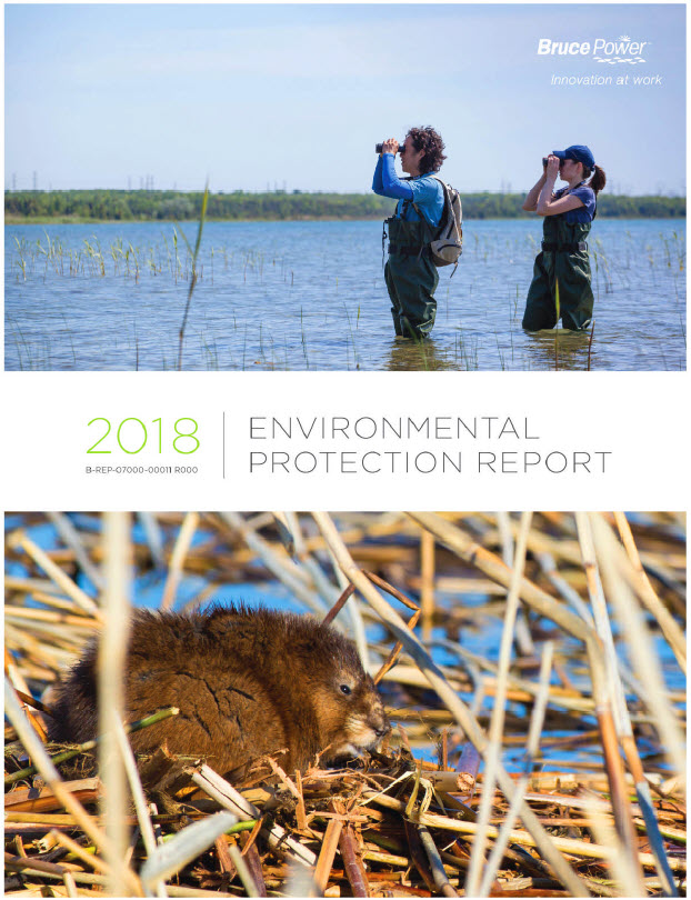 2018 environmental protection report