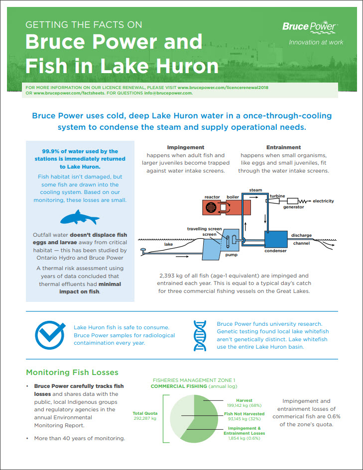 Facts on fish in lake huron