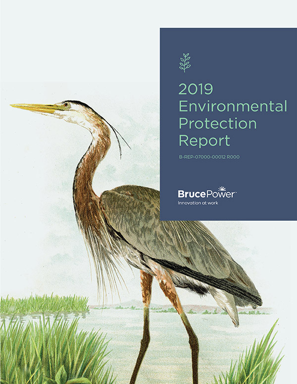 2019 Environmental Protection Report